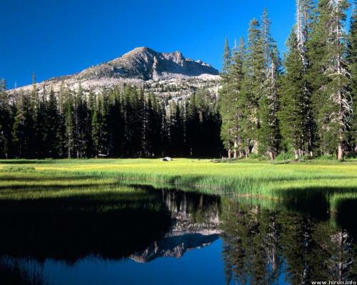 el-dorado-national-forest_sierra-nevada_california[1].jpg